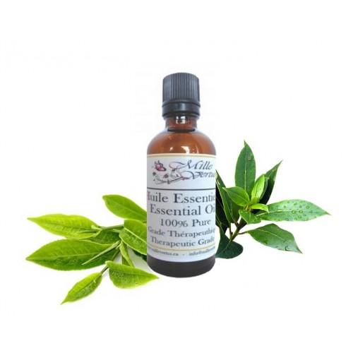 huile essentielle arbre th tea tree melaleuca alternifolia. Black Bedroom Furniture Sets. Home Design Ideas