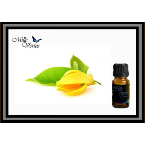 Huile essentielle ylang ylang iii for Plante ylang ylang