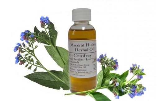 Comfrey Oil (Symphytum officinale) Macerated