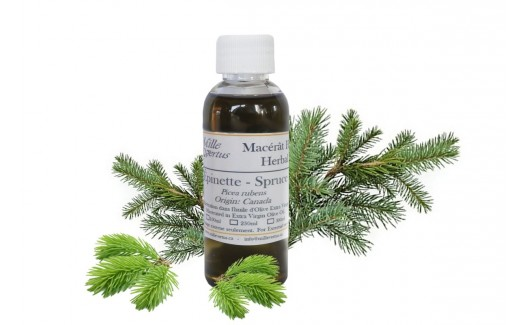 Spruce Oil (picea rubens) Macerated